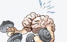 افزایش قدرت حافظه
