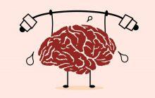 اصول طلایی تقویت حافظه