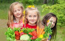 تقویت حافظه با میوه